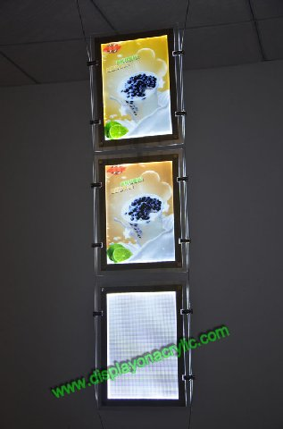 led landscape window display