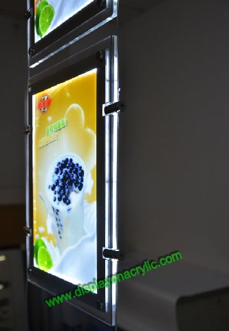 portrait led window displays